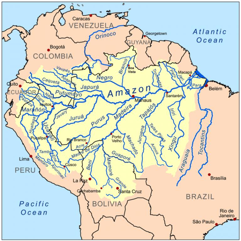 brazillie