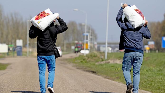 Immigranten leveren flinke winsten op: Centraal Orgaan opvang Asielzoekers maakt €23 miljoen winst