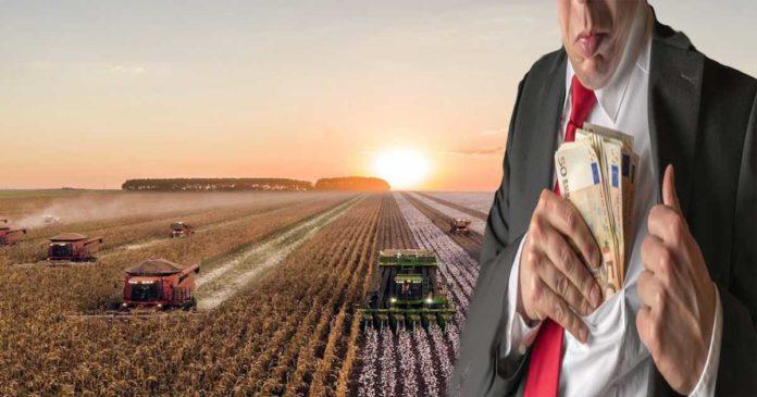 'Het is een absoluut corrupt systeem': hoe EU-landbouwsubsidies worden misbruikt door oligarchen en populisten