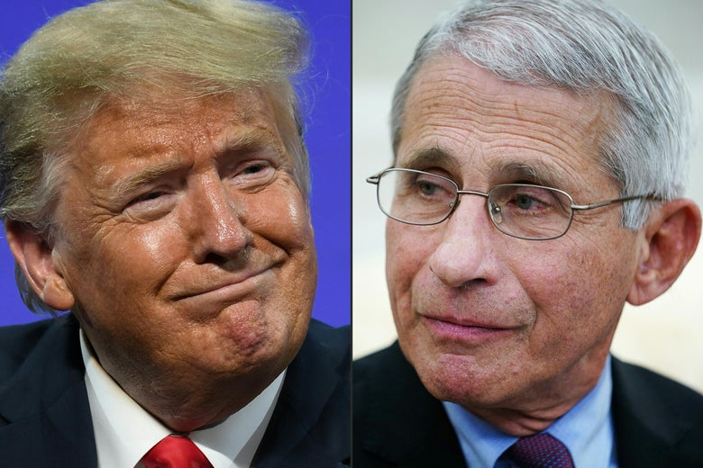Dr. Fauci citeert nu 'The Godfather' als reactie op Trump's laatste aanvallen op zijn competentie