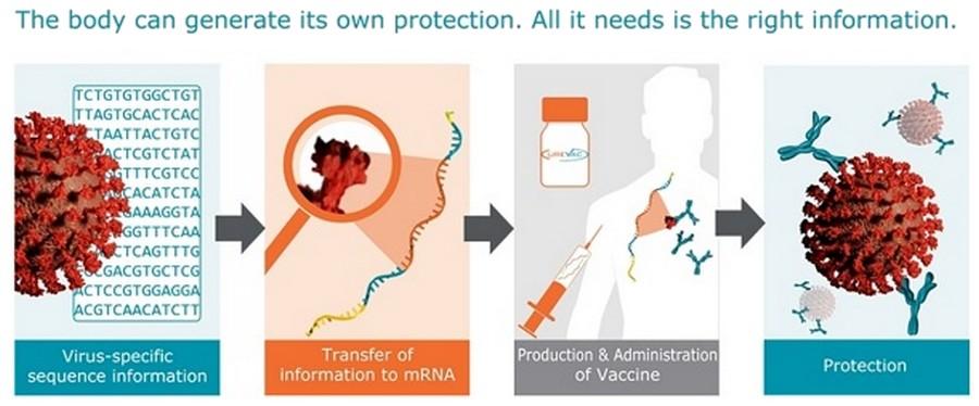 Producent Moderna: De Pfizer- en Moderna-injectie is geen vaccin maar een besturingssysteem