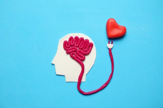 Cupido's pijlen veranderen van richting: liefde zit in de hersenen