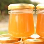 日本ミツバチの秋蜜が採れました。