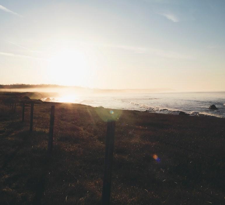Sun Fence Ocean