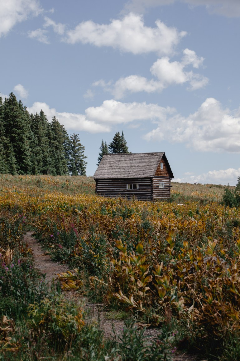 Cabin in Meadow