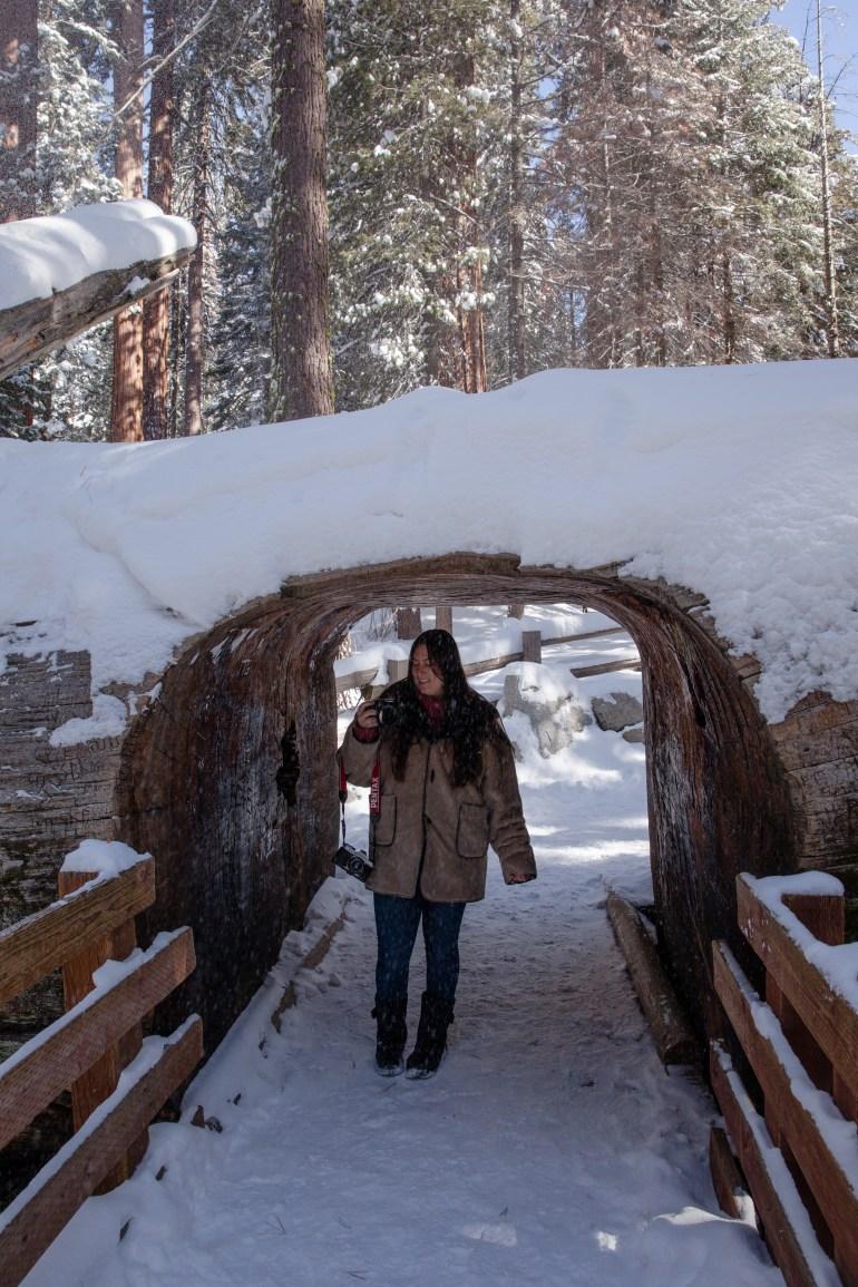Sequoias-47