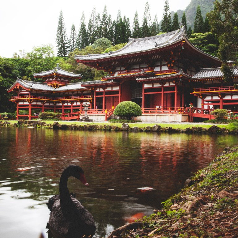 Temple with Swan