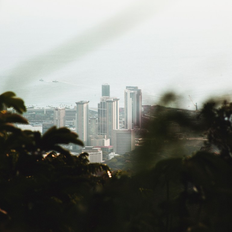 City Through Plants