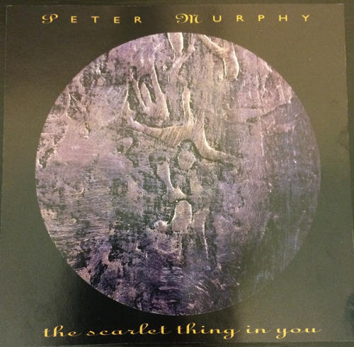 Peter Murphy The Scarlet Thing In You US CD Promo 1995 Front Cover