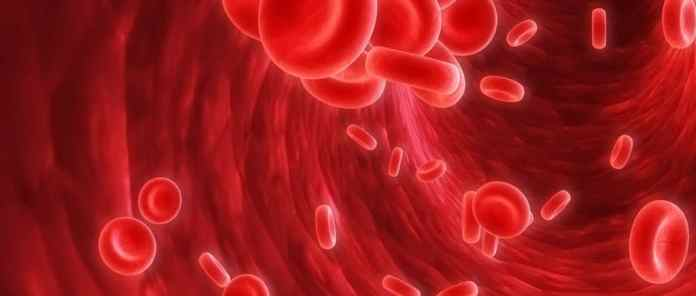anemia naturopata