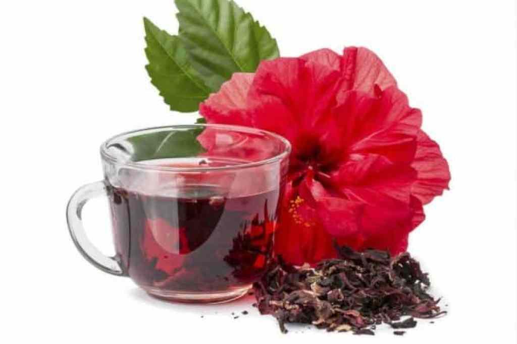 beneficios de la flor de jamaica