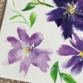 I've been super inspired to paint the look and feel of the Clematis flower.
