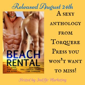 Beach Rental Square