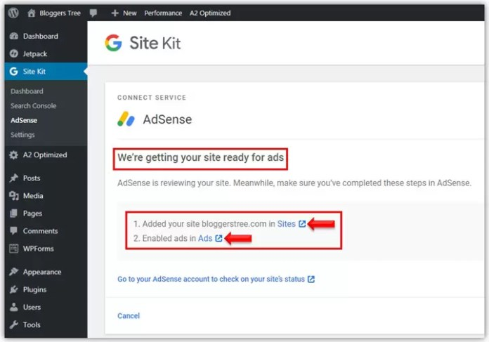 Google AdSense Setup in Site Kit Plugin in Hindi