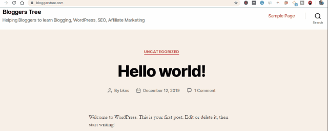 Default Website Page after WordPress installation