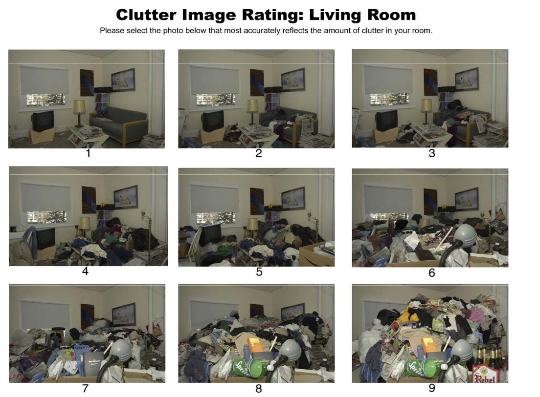 Hoarding Amp Cluttering Hoarding Scale 1 9 Ocd Mental Illness