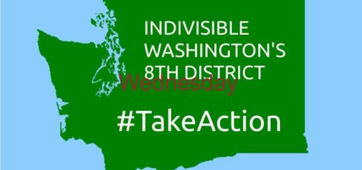 Indivisible Washington's 8th District Take Action
