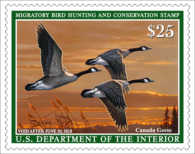 Migratory bird hunting and conservation stamp 2018