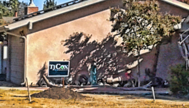 IEB canvasses for TJ Cox in Sanger, photo by Ted Lam