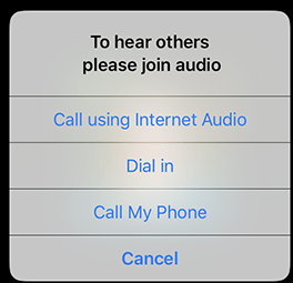 to hear others please join audio zoom