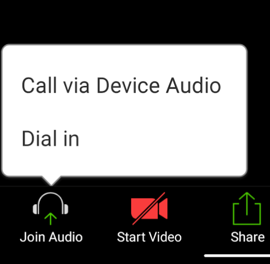 zoom call via device audio