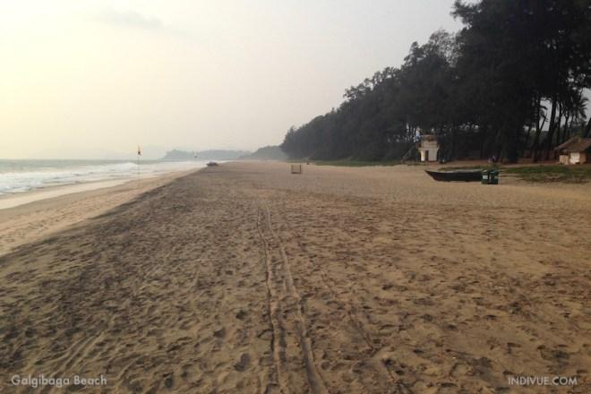 Galgibaga Beach, Goa, Intia