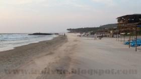 Morjim Beach, Goa, India