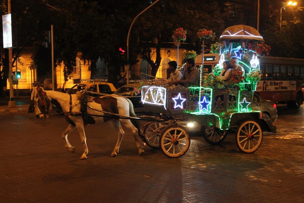 img_horses_mumbai