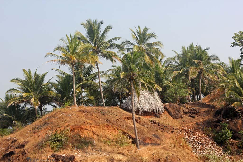 индия форт