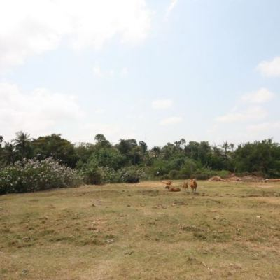 57 Are riverfront land for sale in Pererenan