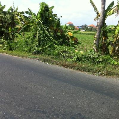 Land for lease in Sanur Bali