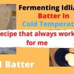https://i1.wp.com/indoeuropean.eu/content/uploads/2021/02/fermenting-idli-dosa-batter-in-c.jpg?resize=150%2C150&ssl=1