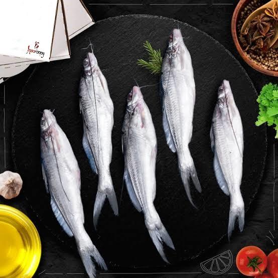 Tengra River Fish fresh