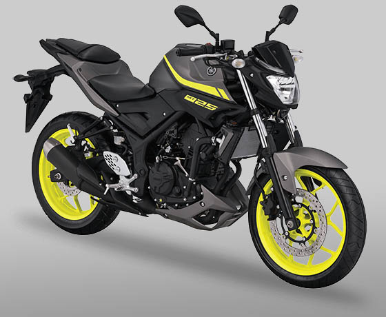 Yamaha MT25 warna Matte Grey