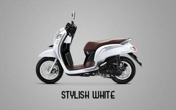 Honda Sccopy Warna Stylish White