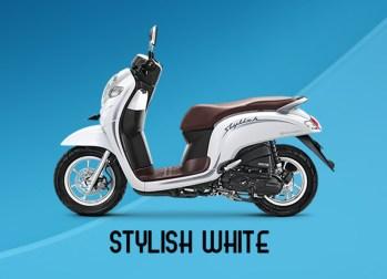 Honda Scoopy Warna Stylish White