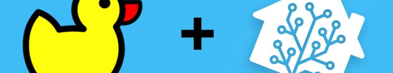 Aggiornare il proprio record su DuckDNS tramite automazione Home Assistant