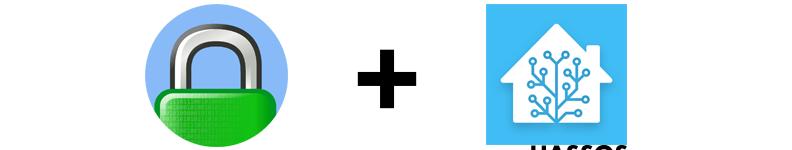 Installare e configurare Caddy (reverse proxy) su Home Assistant OS (HassOS/HASSIO)