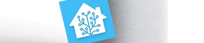 Integrare gratuitamente Home Assistant su Google Assistant (via GCP)