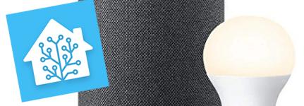 Informazioni personalizzate via Alexa tramite flash briefing e Home Assistant