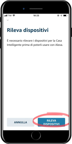 Home Assistant - Integrazione Amazon Alexa - 7