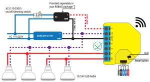 Shelly RGBW2 - schema di connessione - AC White LED bulbs