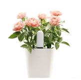 Xiaomi Mi Flora Smart