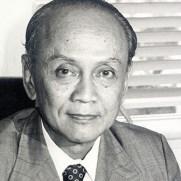 Ali Budiardjo