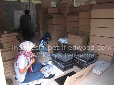 Packing Petrified Wood Tiles