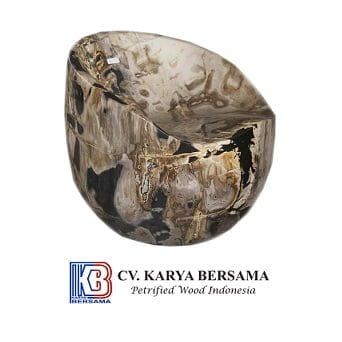 Indonesia Petrified Wood 3