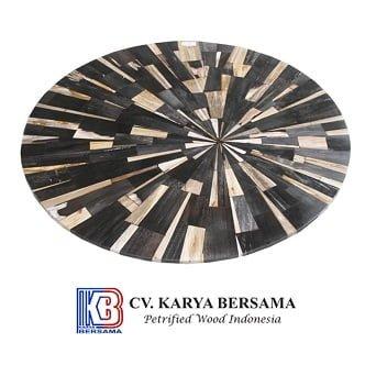Indonesia Petrified Wood 10