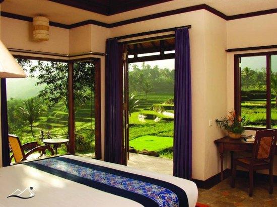 12-2-Ijen-Resort---Room-1