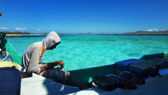 Indonesia colori di komodo