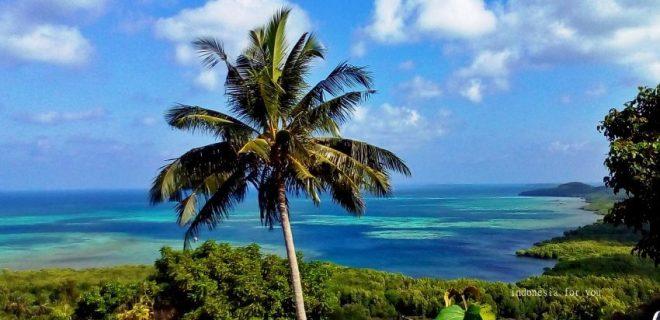 karimunjawa palma e vista
